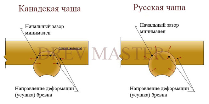 Сравнение канадской чаши и русской чаши